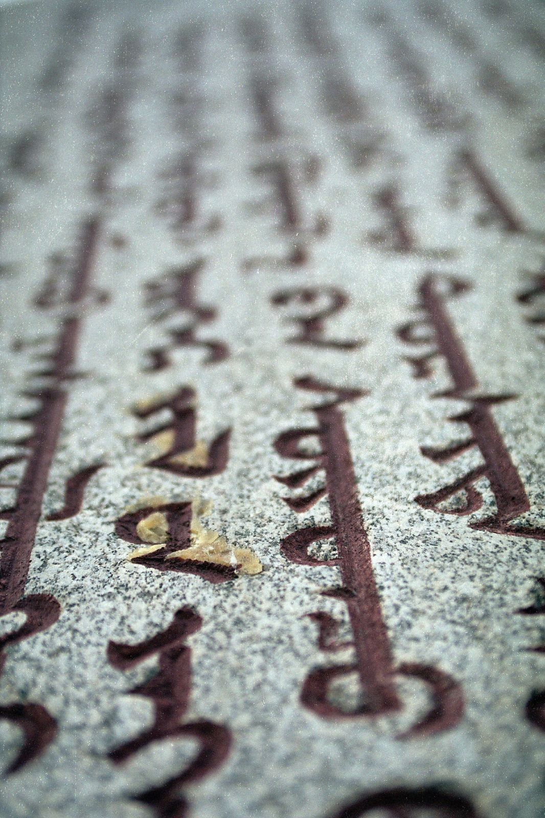Making Sense of the Traditional Mongolian Script
